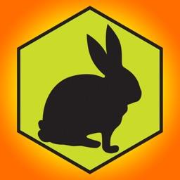 Block The Rabbit