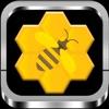 蜂巢迷宫-挑战人类极限 超级变态超级虐心 不可能完成的最强大脑智力挑战