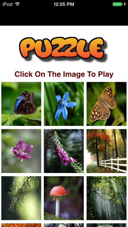 Amazing Nature Puzzle Game