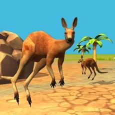 Activities of Kangaroo Simulator