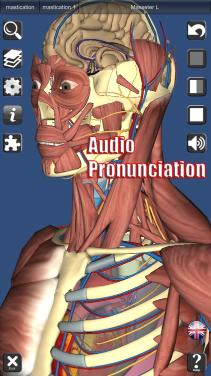 3D Anatomy screenshot-2