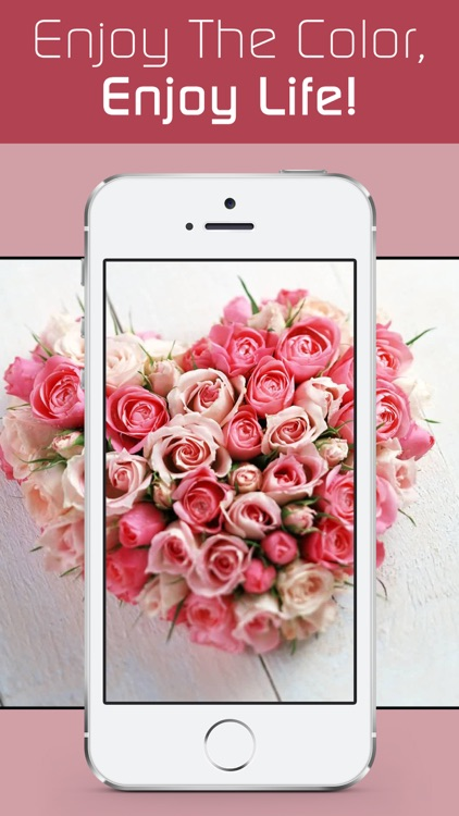 Love Wallpapers HD, Romantic Backgrounds & Valentine's Day Cards screenshot-4