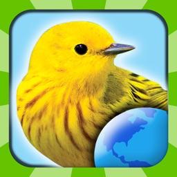 My Bird World HD