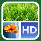 Dyptic 帧 Frames FREE icon
