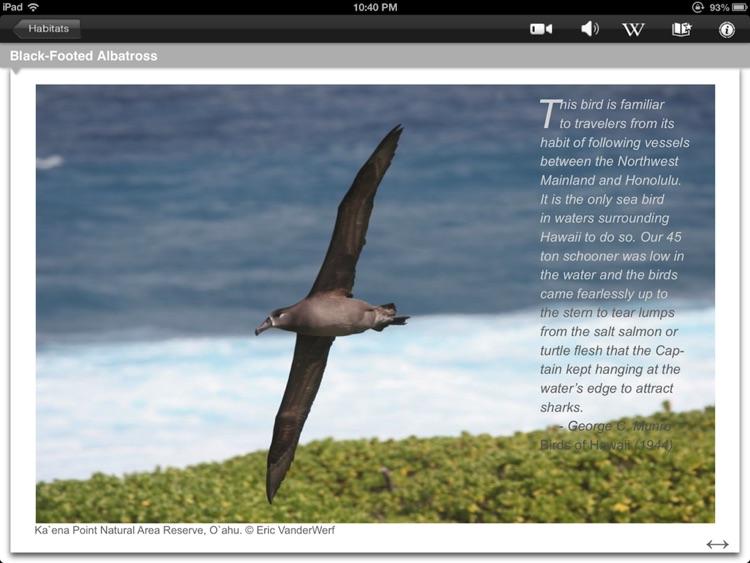 Bird ID Hawaii for iPad screenshot-4