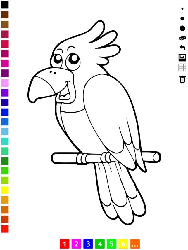 Aktif Boyama Kitabı Kedi Köpek Balık Domuz Kuş Ve Papağan Gibi