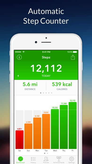Stepz - Step Counter Screenshot