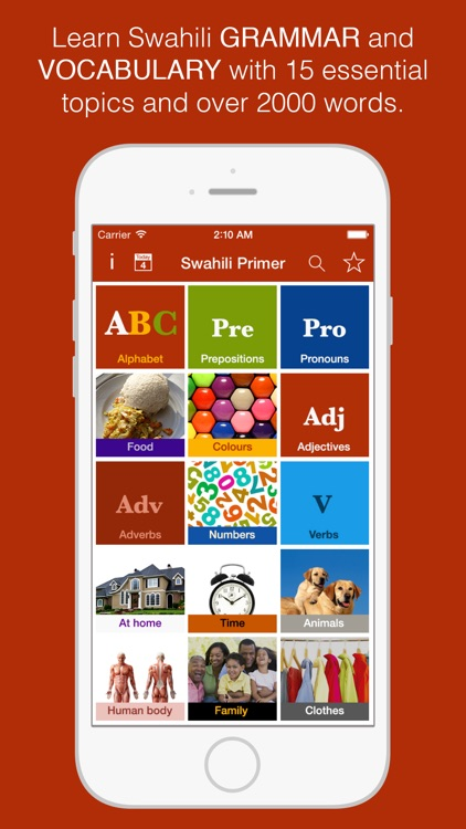 Swahili Primer - Learn To Speak And Write Swahili Language: Grammar, Vocabulary & Exercises screenshot-0