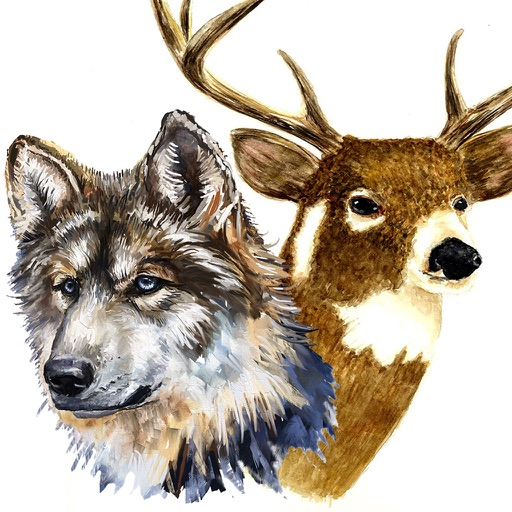 Oil Painting Wildlife: Deer & Wolves