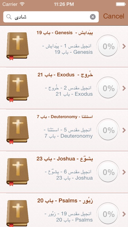 Urdu Holy Bible - انجیل مقدس screenshot-3