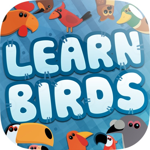 Learn About Birds Preschool Lunchbox Adventure - 3 in 1 Free Educational Game - Teach Preschool Kids and Children Bird Names in a Fun and Interactive Way by ABC BABY