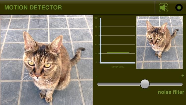 Motion Detector S
