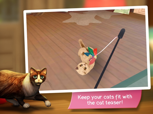 cathotel care for cute cats on the app store