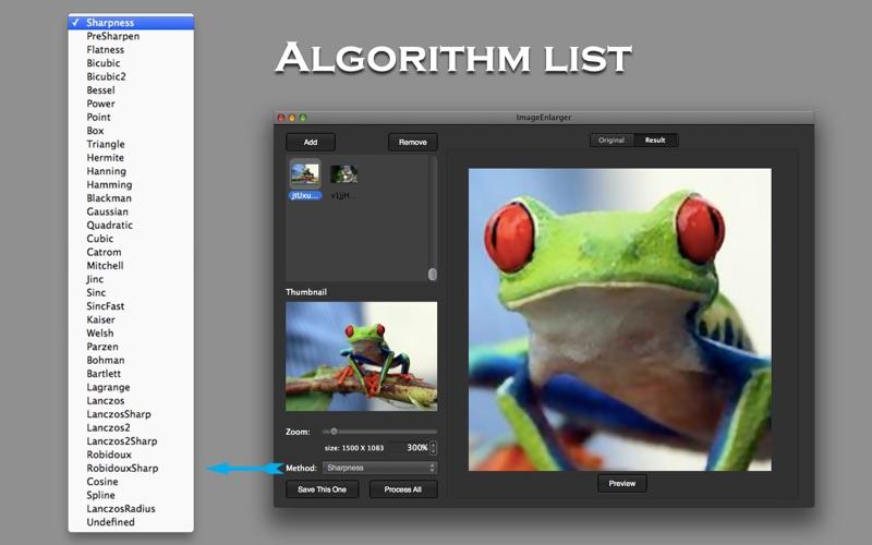 ImageEnlarger Screenshot