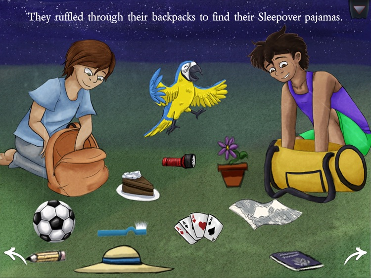 A Soccer (or Football) Sleepover in Brazil screenshot-3