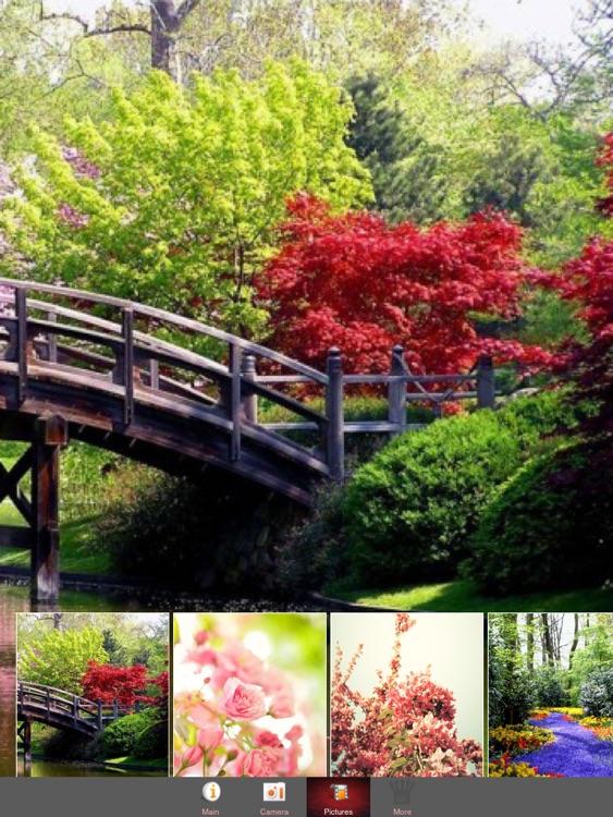 Spring Floral Frames