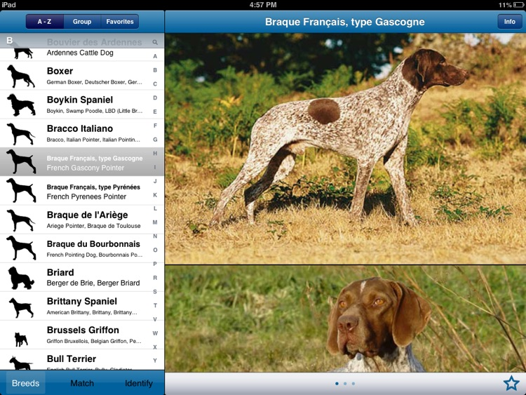 Perfect Dog HD Free - Ultimate Breed Guide To Dogs