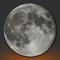 Countdown to the exact time of the next moon phases: full moon, new moon and first and last quarter