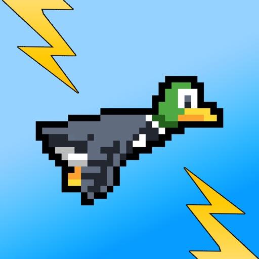 Zappy Duck Pro