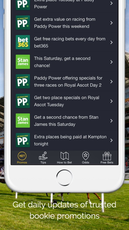 Horse Racing Tips, Free Bets & Betting Offers - Typpa