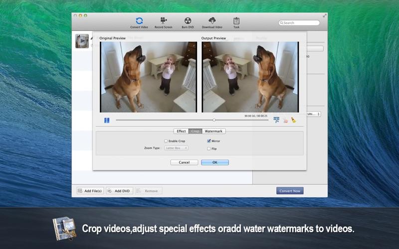 Any Video Converter Platinum Screenshot