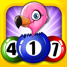 Activities of Flamingo Bingo FREE - Match 3 Three Puzzle Action Adventure Game