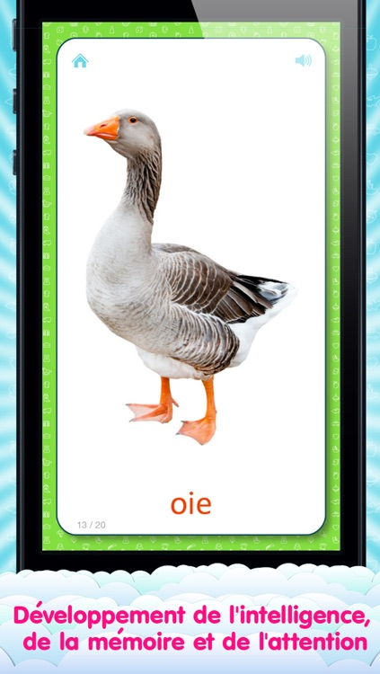 French Flashcards for Kids and logic game «Find a Picture» screenshot-3
