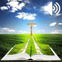 Audio Libro - La Santa Biblia