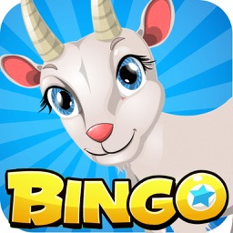 Pocket Bingo - Free Bingo Play