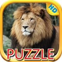 Codes for Lions and Big Cats - Puzzle Slide Hack