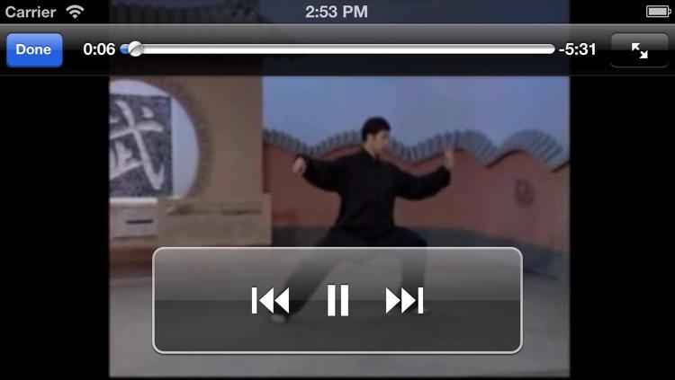 陈式太极拳-武术名家讲解示范,Chen Tai-chi, A Kind of Traditional Chinese Shadowboxing screenshot-4