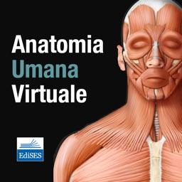 Anatomia Umana Virtuale
