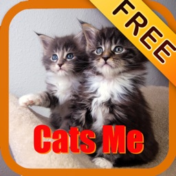 Cats Me - Cats Effects FREE