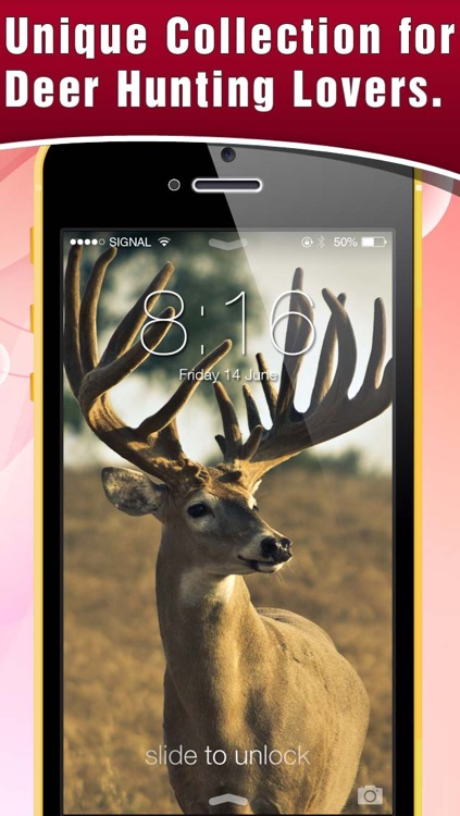HD Deer Hunting Lock Screens & Wallpapers screenshot-4