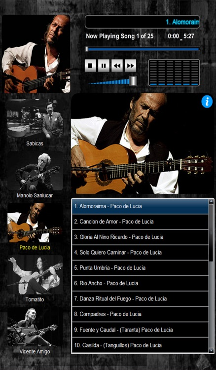 Masters of Flamenco  (5 Maestros over 100 Compositions)