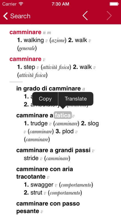 Italian-English Dictionary from Accio