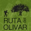 Olive tree routes