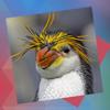 Déjà Vu - Birds