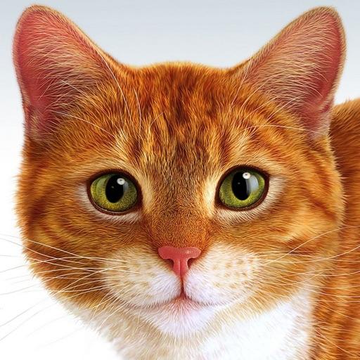 Aprenda Animales y sonidos en español - Learn Animals and Sounds in Spanish