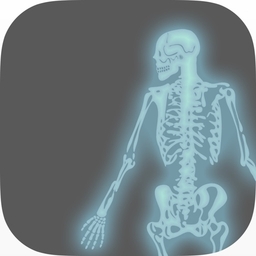 Ortho Assess
