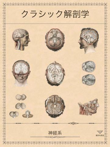 クラシック解剖学のおすすめ画像3