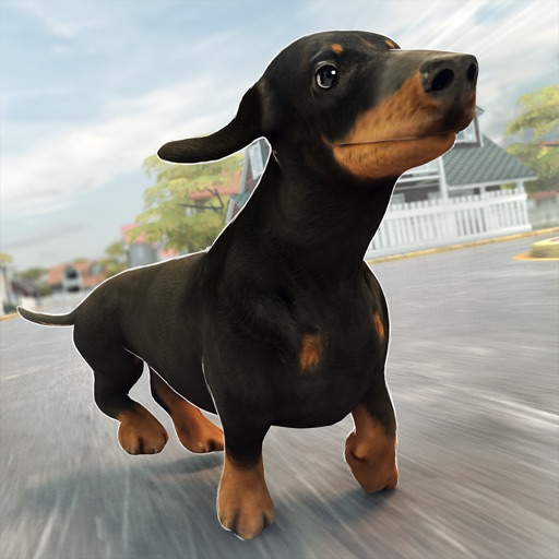 Funny Doggy | Dog Running Training Simulator Game for Free iOS App