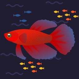 Betta Jump - The Fishing Game