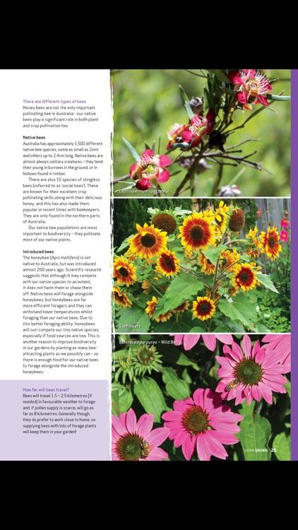 Home Grown Magazine