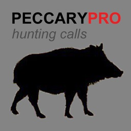 REAL Peccary Calls and Peccary Sounds for Peccary Hunting - BLUETOOTH COMPATIBLE