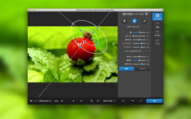 Photo Focus Movavi: Quick & Easy Image Blur Screenshot
