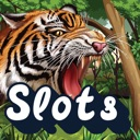 Jungle Cat Slots – Play Free Casino Slot Machine!