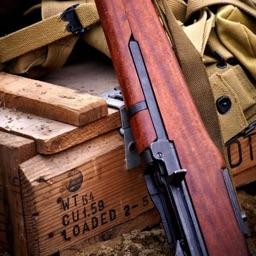 CHI Encyclopedia of Guns