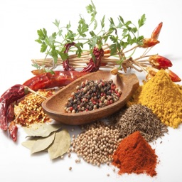 Culinary Herbs and Spices Guide