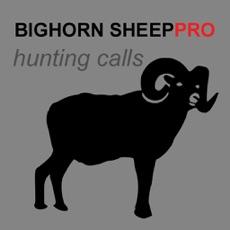 Activities of REAL Bighorn Sheep Hunting Calls - 8 Bighorn Sheep CALLS & Bighorn Sheep Sounds! -- (ad free) BLUETO...